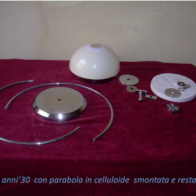 cell_rextauro (1)